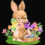 Happy Easter Bunny Rabbit Eggs Flowers