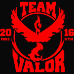 Team Valor 1 Gym