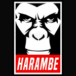 Harambe 1 Obey