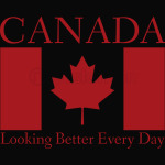 Canadian Flag Red and White Maple Leaf