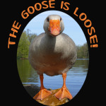 The Goose is loose T-Shirt