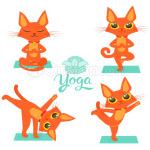 Funny Cat Doing Yoga