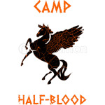 Camp Half Blood Flying Hours