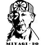 Karate Kid - Miyagi Do