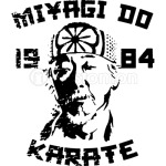 Karate Kid - Mr Miyagi Do 1984